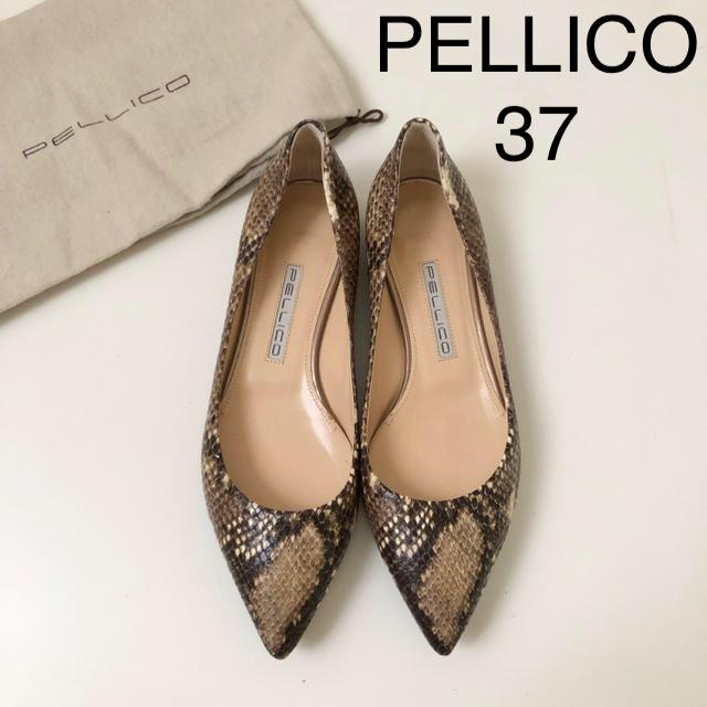 PELLICO(ペリーコ)の極美品★ ペリーコ パイソン フラットシューズ 37 レディースの靴/シューズ(ハイヒール/パンプス)の商品写真