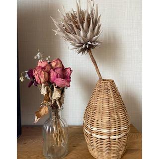 アクタス(ACTUS)のnonsuke様専用 花瓶 フラワーベース ラタン 鉢カバー(花瓶)