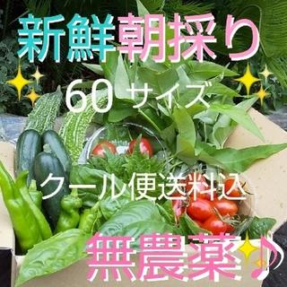 あんさん専用♡︎お野菜詰め合わせ♡︎(野菜)