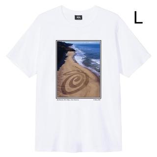 ステューシー(STUSSY)の日本未発売 STUSSY LAND ART TEE  Lサイズ(Tシャツ/カットソー(半袖/袖なし))