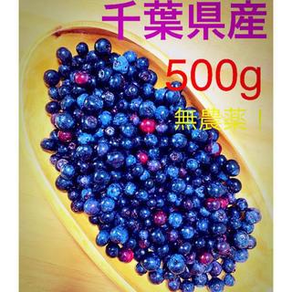 千葉県生ブルーベリー500+おまけ(フルーツ)