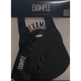 シュプリーム(Supreme)の新品未使用 Example 使い回しマスク(生地/糸)