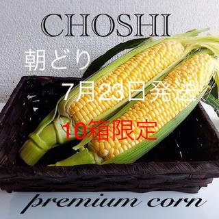 千葉県産 甘ーいトウモロコシ(野菜)