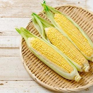 『 採れたて直送 』 朝採りトウモロコシ ( ゴールドラッシュ )限定3箱③(米/穀物)