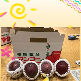 レッドキーツマンゴー  1キロ 沖縄産(フルーツ)
