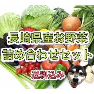 7/21発送 長崎県産 新鮮 野菜 詰め合わせセット 80サイズ 8品以上🐯(野菜)