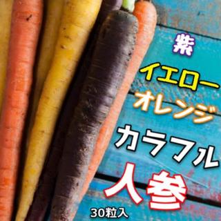 オレンジ 黄色 紫 3色MIXニンジンの種野菜の種 30個(野菜)