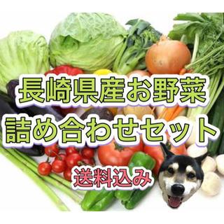 長崎県産 新鮮 野菜 詰め合わせセット 80サイズ 8品以上🐯(野菜)