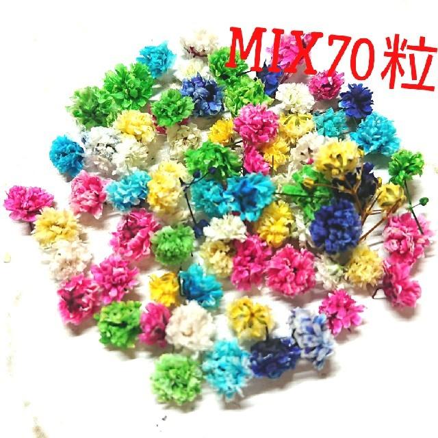 【mix⑤】かすみ草 ドライフラワー70粒 ハンドメイドのフラワー/ガーデン(ドライフラワー)の商品写真