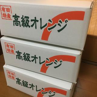 パンダ様専用 3箱セット 国産バレンシアオレンジ  LL 5kg 送料無料 有田(フルーツ)