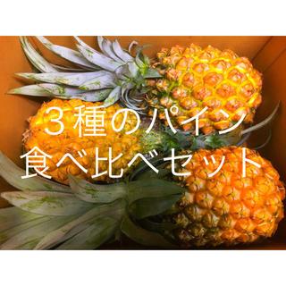 【数量限定】3種のパイン食べ比べセット(フルーツ)