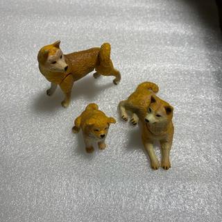 チョコエッグ 犬親子セット⑧柴犬