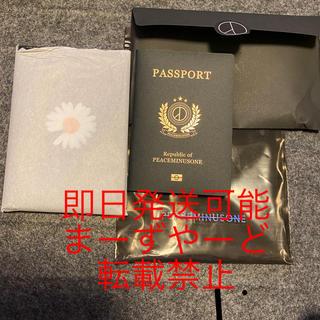 ピースマイナスワン(PEACEMINUSONE)のピースマイナスワン パスポートケース(その他)
