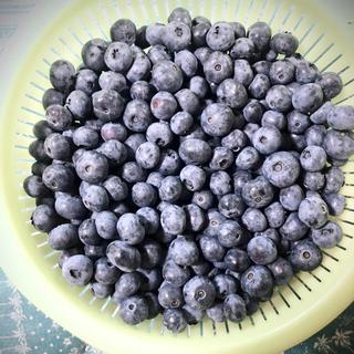 ⭐︎購入前コメントお願い致します🌸様⭐︎専用 群馬県産ブルーベリー 冷凍5キロ(フルーツ)