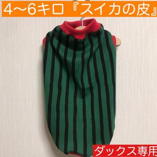 4〜6キロ『スイカの皮』メルロコ ダックス 犬服(ペット服/アクセサリー)
