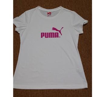 プーマ(PUMA)のPUMA Tシャツ(その他)