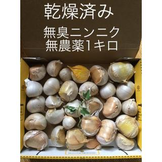 無農薬  1キロ 無臭ニンニク 鹿児島県産 令和2年6月収穫 天日干し済み(野菜)