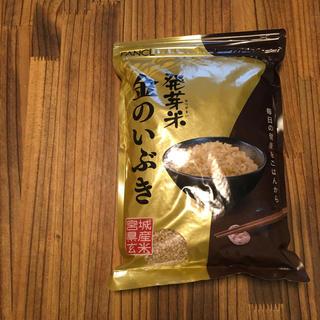 ファンケル(FANCL)の金のいぶき 1キロ ファンケル 発芽玄米 無洗米 玄米 発芽米(米/穀物)