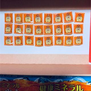 イトウエン(伊藤園)の健康ミネラルむぎ茶 応募券 48点(ノベルティグッズ)