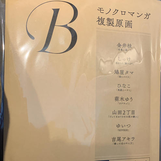 drap 複製原画 B(イラスト集/原画集)