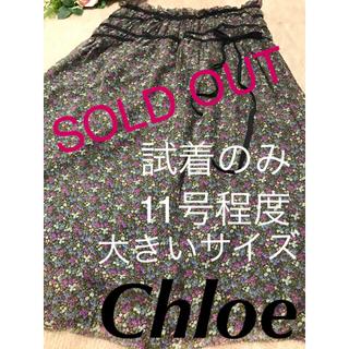 クロエ(Chloe)の極美品❤️Chloe❤︎クロエ❤️シルク リバティー シフォン ミモレ スカート(ロングスカート)