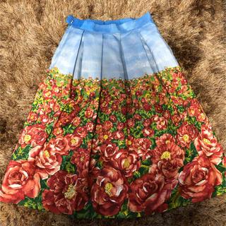 ロイスクレヨン(Lois CRAYON)のロイスクレヨン ストーリーブック掲載 ローズフィールド柄スカート (ロングスカート)