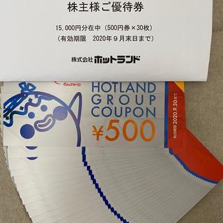 ホットランド株主優待券 15,000円分 銀だこ(フード/ドリンク券)
