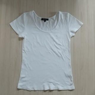アンドバイピーアンドディー(&byP&D)の&byP&D 白Tシャツ Sサイズ(Tシャツ(半袖/袖なし))