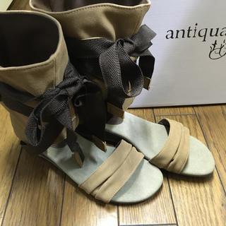 アンティカ(antiqua)のアンティカ antiqua  リボン付ブーツサンダル ブーサン ブラウン(サンダル)