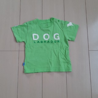 ラブラドールリトリーバー(Labrador Retriever)のラブラドール Tシャツ 90㎝(Tシャツ/カットソー)