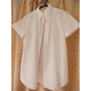 アオヤマ(青山)の青山 レディース 白シャツ 半袖(シャツ/ブラウス(半袖/袖なし))