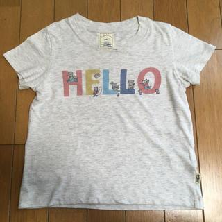 ジェラートピケ(gelato pique)のジェラートピケ Tシャツ(XS)(Tシャツ/カットソー)