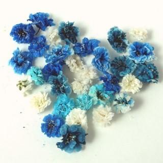 かすみ草21ブルーmix ドライフラワーハンドメイドレジンアクセサリー(ドライフラワー)