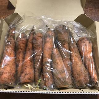 にんじん 有機栽培 無農薬 約1kg(野菜)