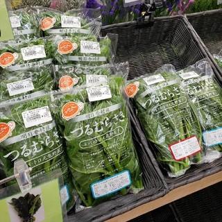 奈良県明日香村産。ウダーラさんちのツルムラサキ(野菜)