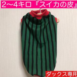 2〜4キロ『スイカの皮』メルロコ ダックス 犬服(ペット服/アクセサリー)