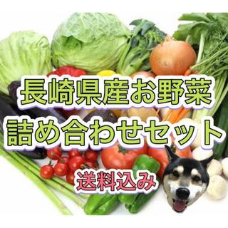 7/29発送 長崎県産 新鮮 野菜 詰め合わせセット 80サイズ 8品以上🐯(野菜)