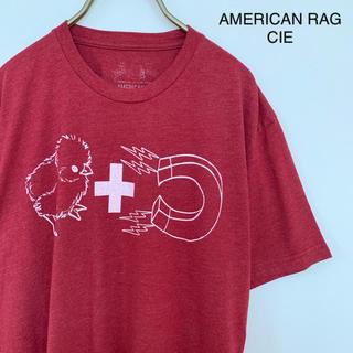 アメリカンラグシー(AMERICAN RAG CIE)の【AMERICAN RAG CIE】古着Tシャツ Mサイズ レッド(Tシャツ/カットソー(半袖/袖なし))