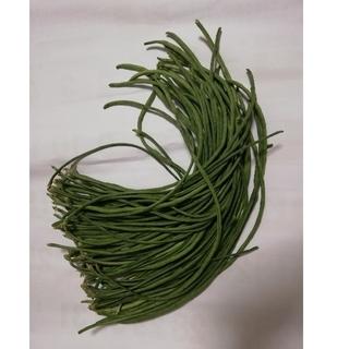 無農薬無化学肥料ささげ700g(野菜)