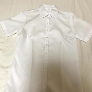 アオヤマ(青山)の洋服の青山 白 シャツ(シャツ/ブラウス(半袖/袖なし))