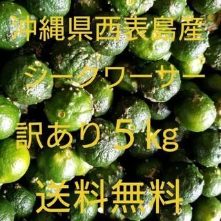 沖縄県西表島産シークヮーサー 訳あり5㎏(フルーツ)