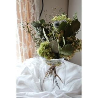 ポポラスと柏葉紫陽花の涼しげな夏のグリーンスワッグ*ドライフラワースワッグ(ドライフラワー)