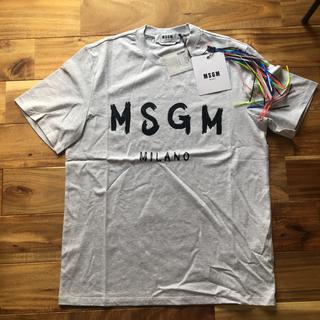 エムエスジイエム(MSGM)の新品 MSGM ロゴ Tシャツ グレー Sサイズ(Tシャツ/カットソー(半袖/袖なし))