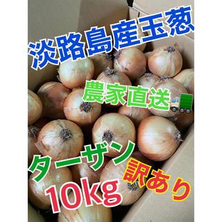 【淡路島産玉葱】10kg 訳あり(野菜)