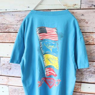 コロンビア(Columbia)のColumbia コロンビア バックプリント  Tシャツ 水色 M(Tシャツ/カットソー(半袖/袖なし))
