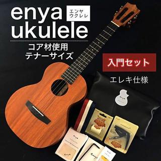 【限定1本モデル】enya eut-x1 ・テナーウクレレ【プロ調整品】(その他)