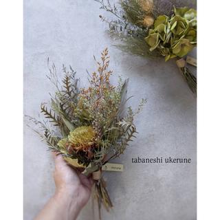 クエキフォリアの落ち着いたスワッグと 紫陽花のナチュラルスワッグ ドライフラワー(ドライフラワー)
