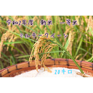 令和2年度 新米 ミルキークイーン 20キロ(米/穀物)