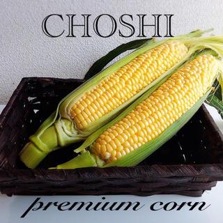 千葉県銚子産甘ーいトウモロコシ(野菜)