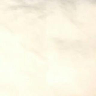 バレンシアガ(Balenciaga)の12341(ショルダーバッグ)